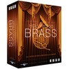 Hollywood Brass Diamond PC